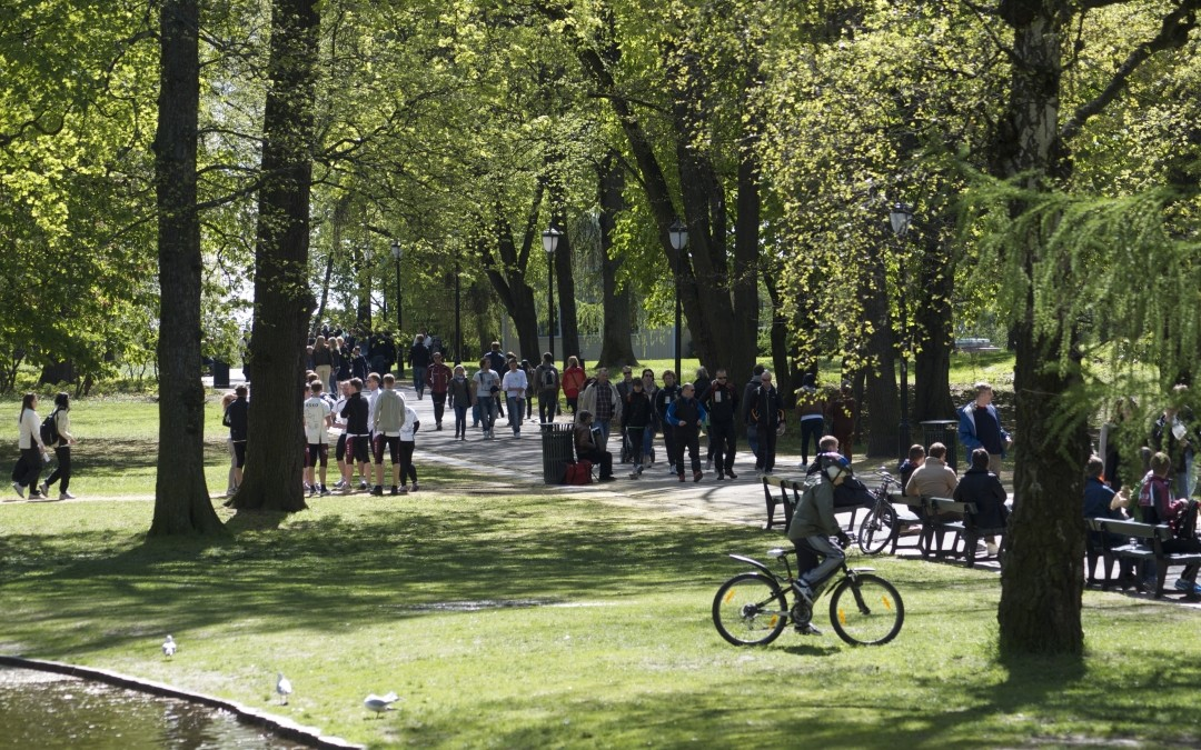 Perspektivplan for Slottsparken