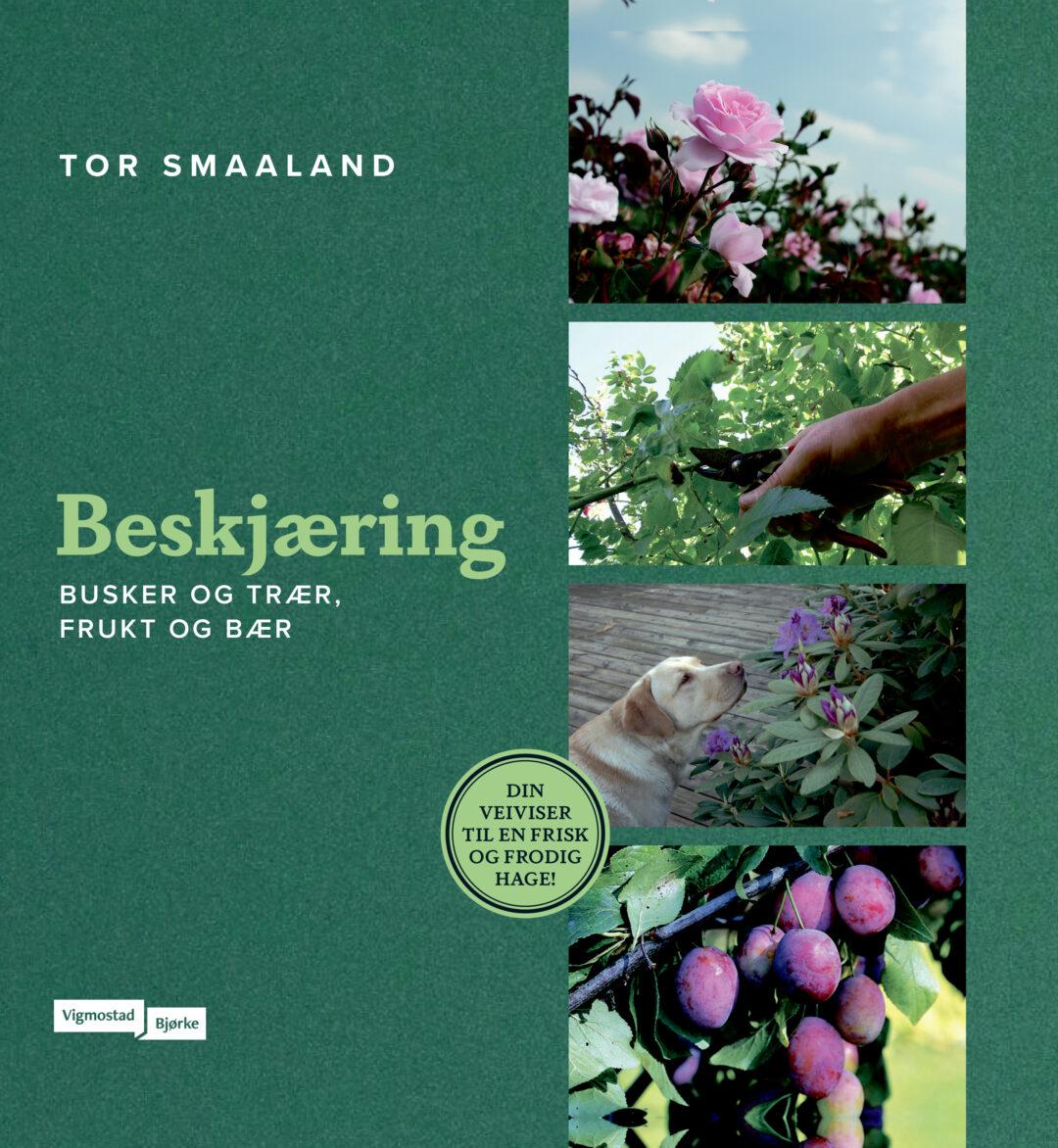 """""""Beskjæring"""" Tor Smaaland"""